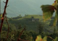 FRIAUL. Reportage. Weinwelten. Music: J Peter Schwalm